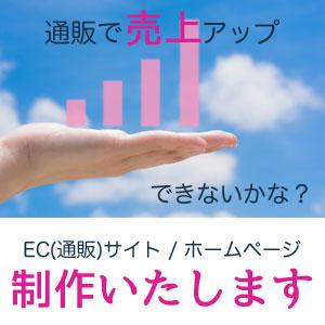 EC(通販)サイトやWEB(ホームページ)の制作なら横浜近郊のみ対応、株式会社アールジャパンへ